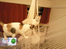 PFL★MIKIのブログ-2012101922570001.jpg