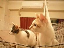 PFL★MIKIのブログ-2012102023180000.jpg