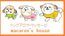 シーズー犬カンマロ君と姉さん日記♪