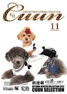 cuun (クーン)-Cuun2012年11月10日号