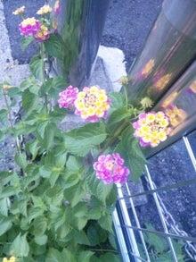 $Love&Light ☆一歩を踏み出す勇気を☆-121101_132028.jpg