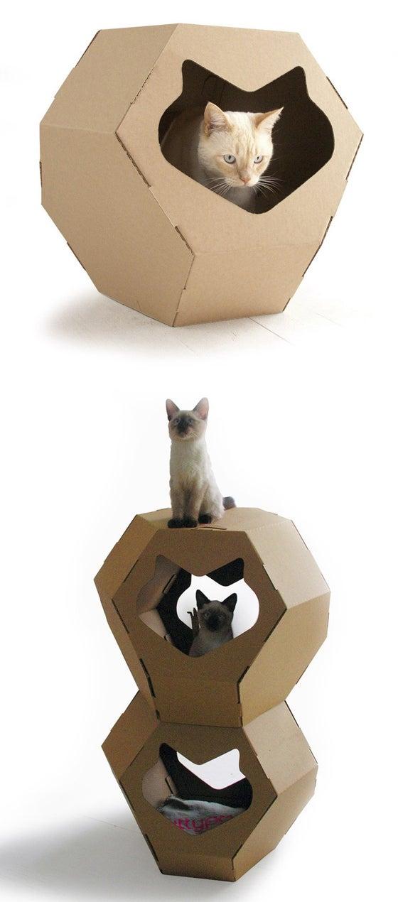 Kittypod