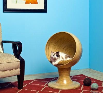 ネコのペットハウス