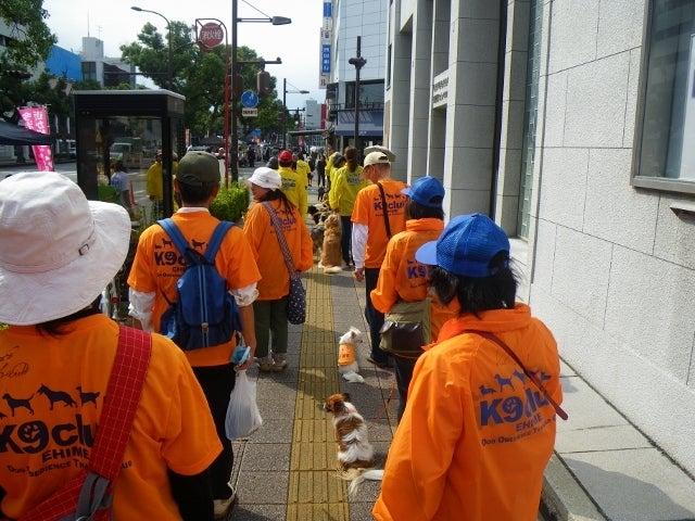 ラブ★らぶ☆パニックのブログ