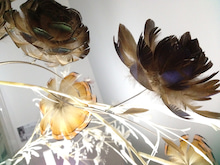 [BIRD MARK]小鳥雑貨と日々のいろいろ。