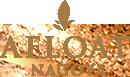 AFLOAT NAGOYA のブログ