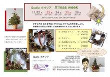 $【クオリア】ミチコの ~うるおいのお花ライフ~-X'mas week
