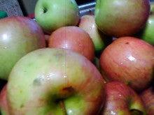 コミュニティ・ベーカリー                          風のすみかな日々-りんご1