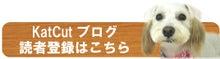 堺市美原区の犬の美容室KatCut(カットカット)