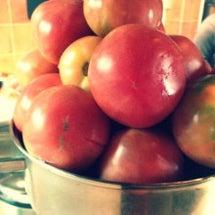 トマトをイタリアンに…