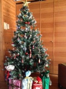 $海辺の隠れ家サロン パナケイア-クリスマスツリー