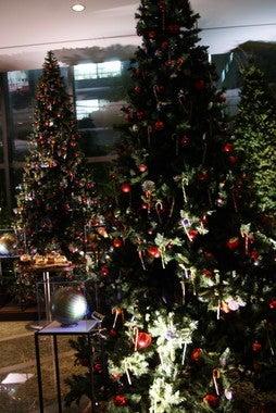スイーツ男子 あまいけいきの裏ブログ-クリスマスチャリティーエリア3