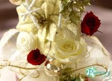 ホワイト キラキラツリー プリ