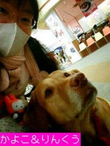 介助犬りんくう☆ブログ-081206_1658~0100010002.JPG