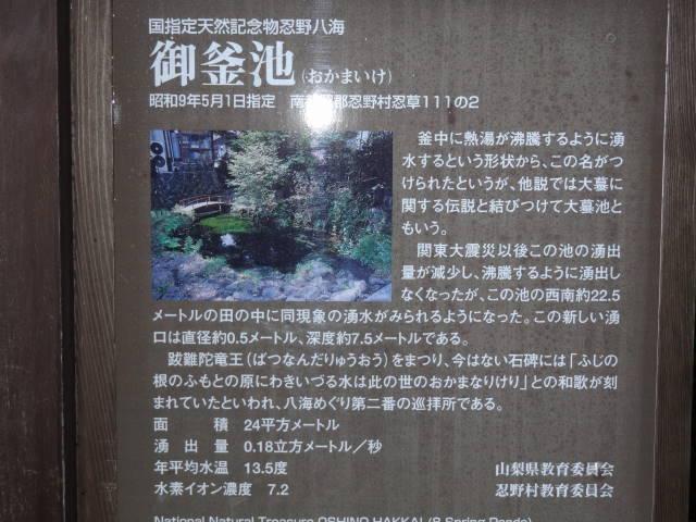 ルークのブログ-御釜池