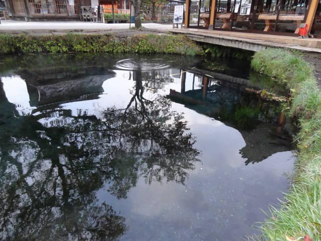 ルークのブログ-涌池 2