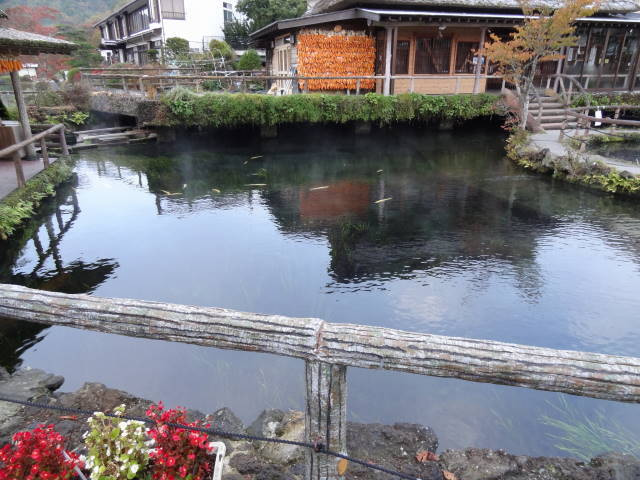 ルークのブログ-忍野八海 5