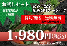 $九州野菜 ハチマルハチ