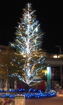 I'm single 【 アイムシングル オタ恋活 オタ婚活 パーティー開催日程・報告 】-クリスマスツリー