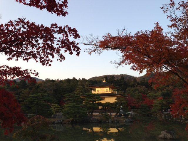 ナカヤマダイゴロー オフィシャルブログ「ダイゴロ~やん」powered by アメーバブログ-金閣寺