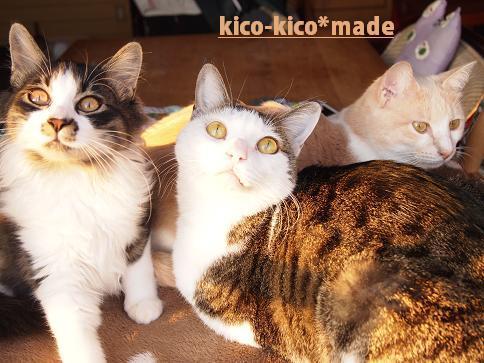 $kico-kico*made