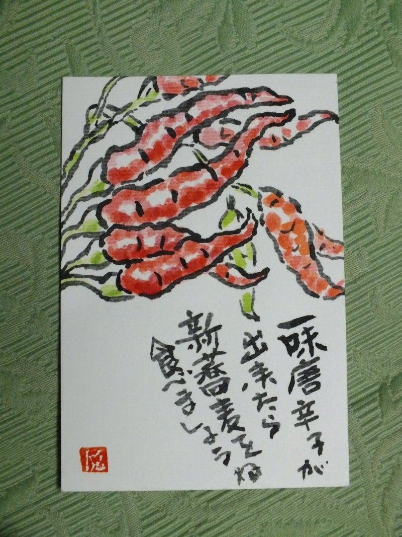はなとkaoruの交換日記~フェレットは笑いと癒しの泉~