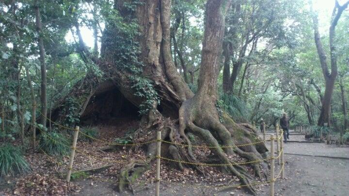 歩き人ふみの徒歩世界旅行 日本・台湾編-城山2