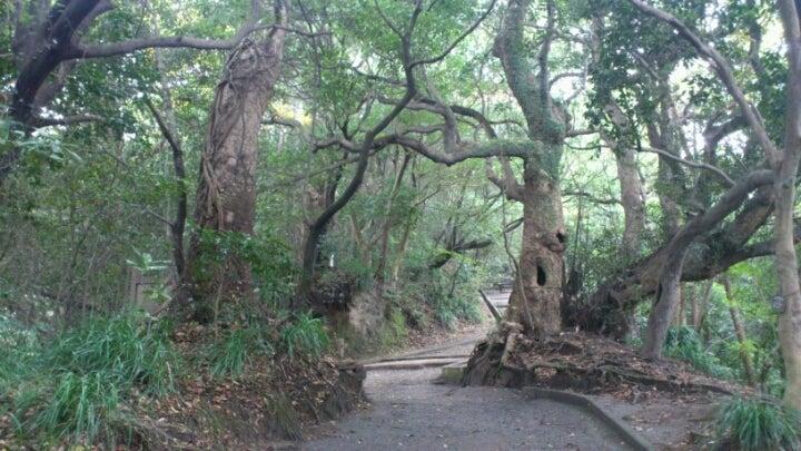 歩き人ふみの徒歩世界旅行 日本・台湾編-城山1