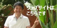 $ファイナンシャルプランナー ☆なーとのブログ☆  【FP office NAGATO】