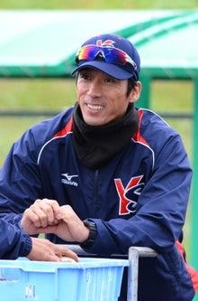 東京ヤクルトスワローズファンのトホホなぼっち観戦記