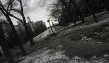 $すすきのBEATの営業雑感 -20121125 大通公園