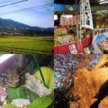 日本百名山の、秋の筑…