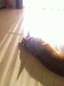 natsumiyoga-yoga_2012112402