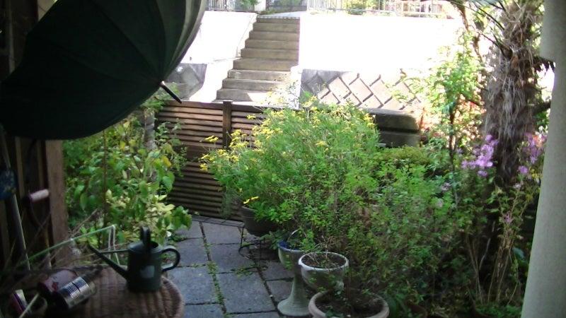 おまけ道@琵琶湖畔で実家生活♪ポテチンっ♪-20121128wed