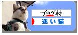 にほんブログ村 猫ブログ 迷い猫・迷子猫へ