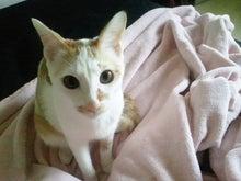 PFL★MIKIのブログ-2012112613040001.jpg