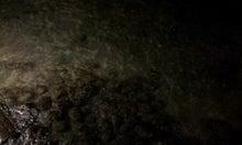 戸賀敬城オフィシャルブログ「南青山で働くメンズクラブ編集長・戸賀敬城のお茶目な社交&お買い物日記」Powered by Ameba-20121129_200220.jpg