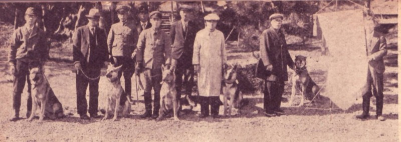 帝國ノ犬達-軍用犬出征