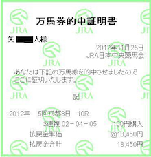 JRA重賞だけで年間プラスを叩き出す競馬予想ブログ☆メインレース馬券データ血統傾向出走各馬徹底分析!