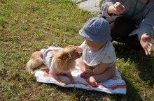 ペットと飼い主さんの肖像画家Erico(エリコ)の動物油絵館-わんこと子供