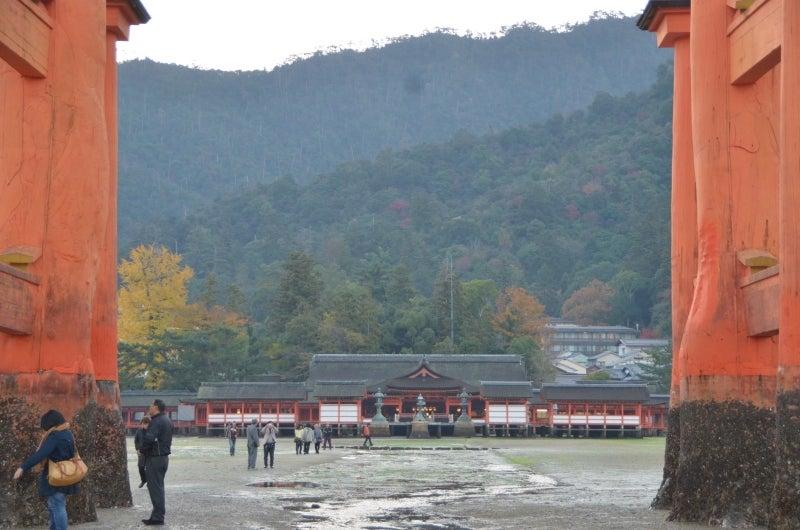 「僕」、日本(チャリ)と世界一周します。-DSC_1475.JPG