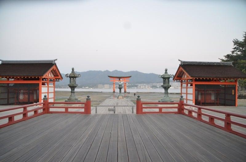 「僕」、日本(チャリ)と世界一周します。-DSC_1445.JPG