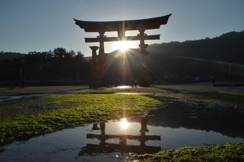 「僕」、日本(チャリ)と世界一周します。-DSC_1531.JPG