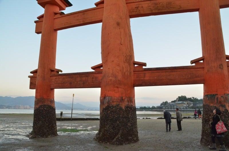 「僕」、日本(チャリ)と世界一周します。-DSC_1468.JPG