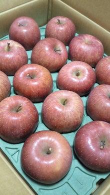 滋賀草津カイロプラクティック(整体・気功)日々の治療日誌-りんご