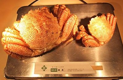$北海道の魚介を直送の寿司店。堺筋本町駅徒歩1分 おたる栄六すし 大阪<br />-けがに 大きい 毛蟹 毛ガニ