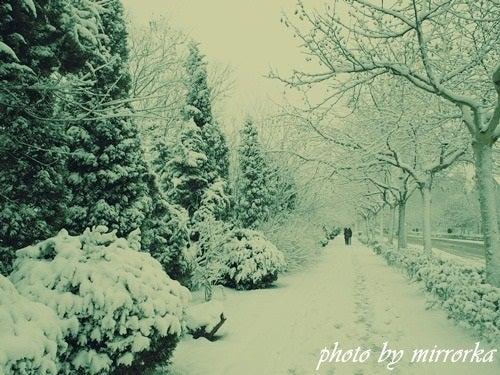 中国大連生活・観光旅行ニュース**-雪の大連