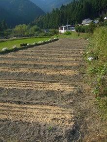 東條農園 有機農業