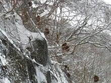 王滝村つれづれフォト記-猿14A