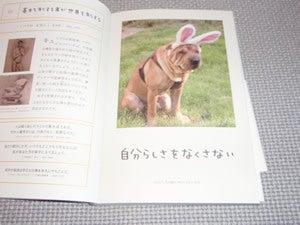 水野敬也オフィシャルブログ「ウケる日記」Powered by Ameba-ワンチャンス3